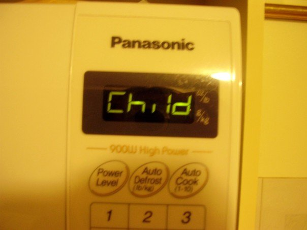 the child setting on my microwave
