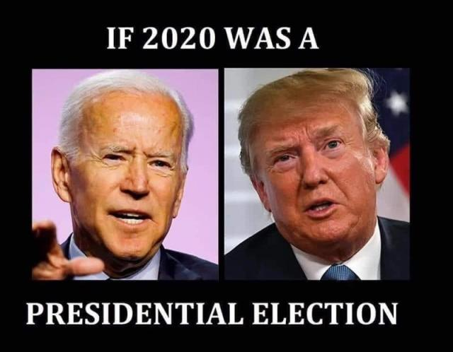 If 2020 was a Presidential Election : memes