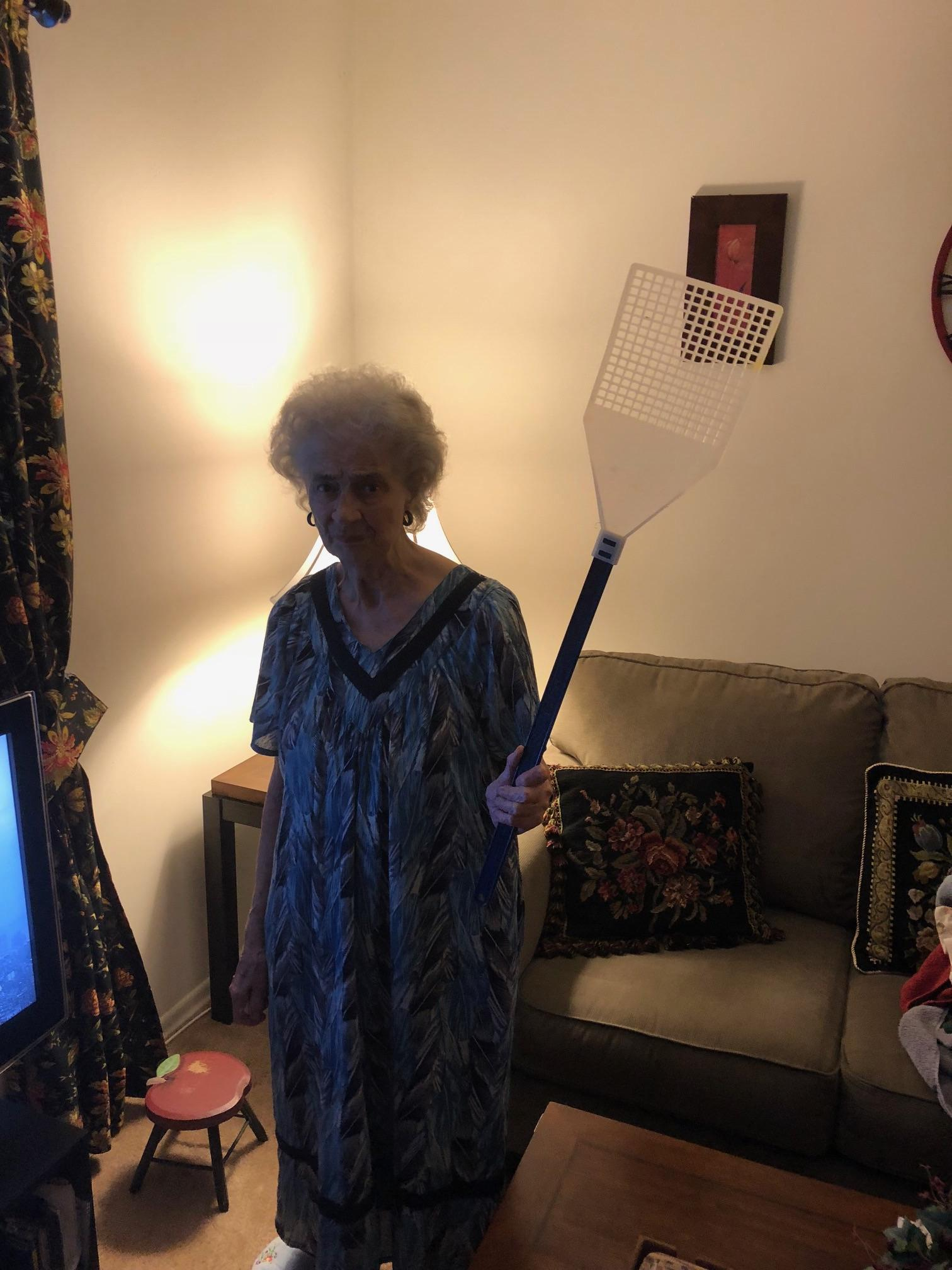 My Grandma And Her Giant Fly Swatter Pics