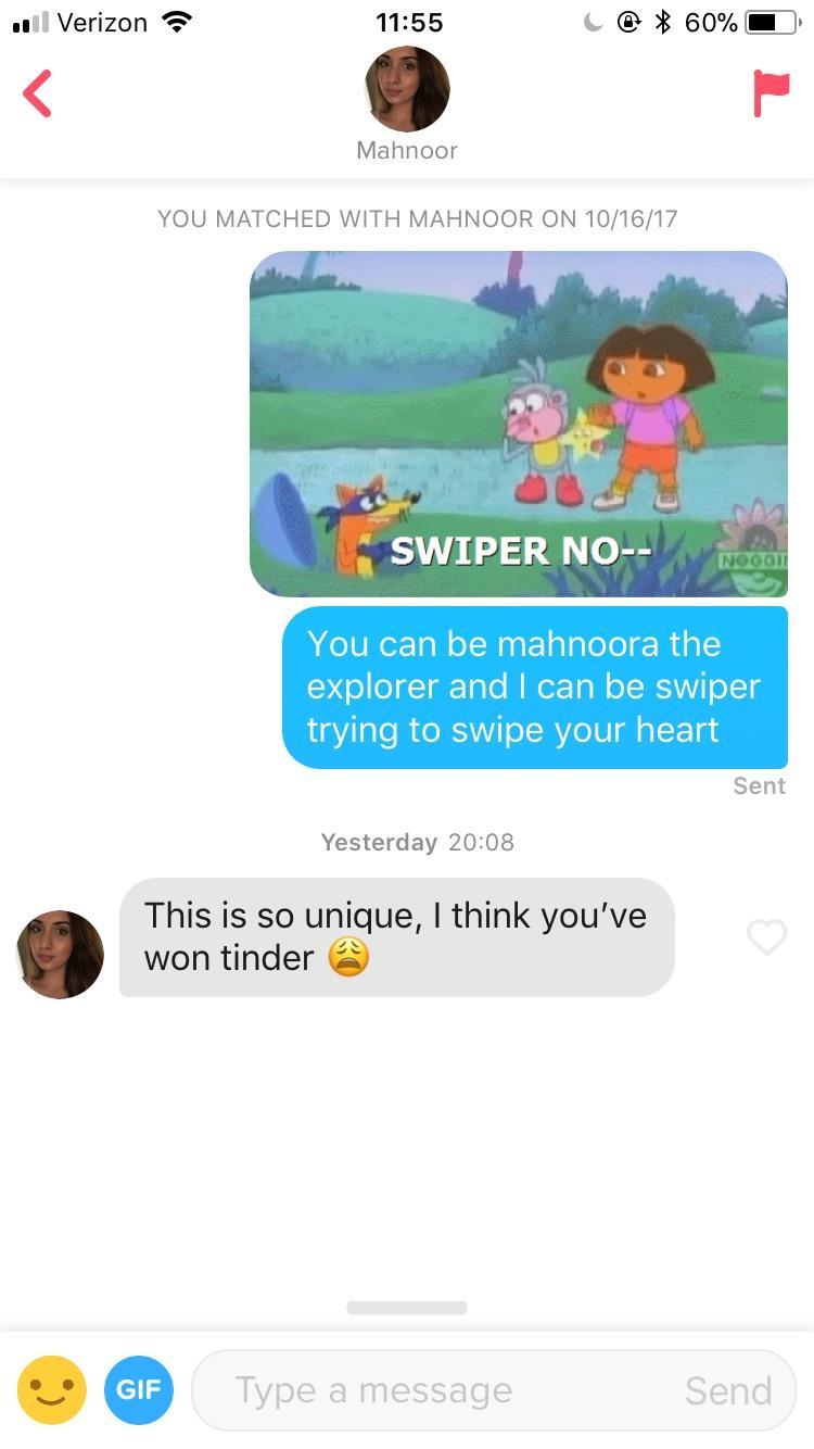 Swiper No Swiping Tinder