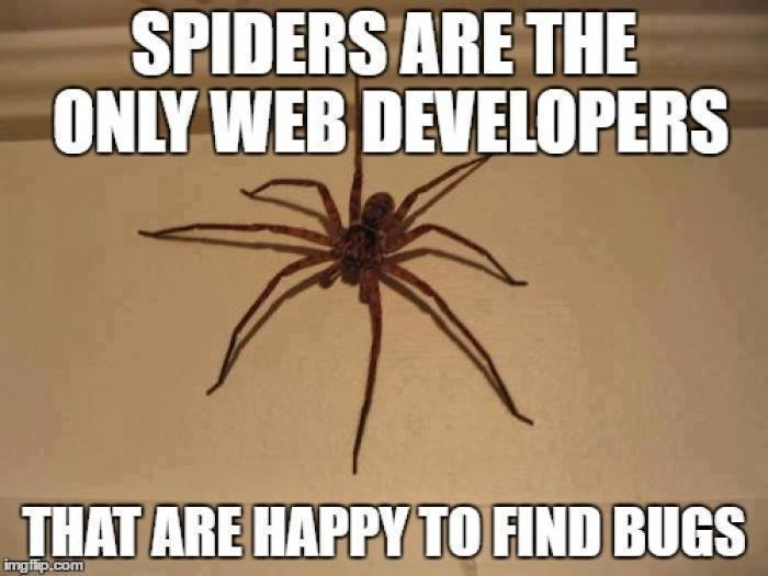 Spiders Are The Only Web Developers Programmerhumor