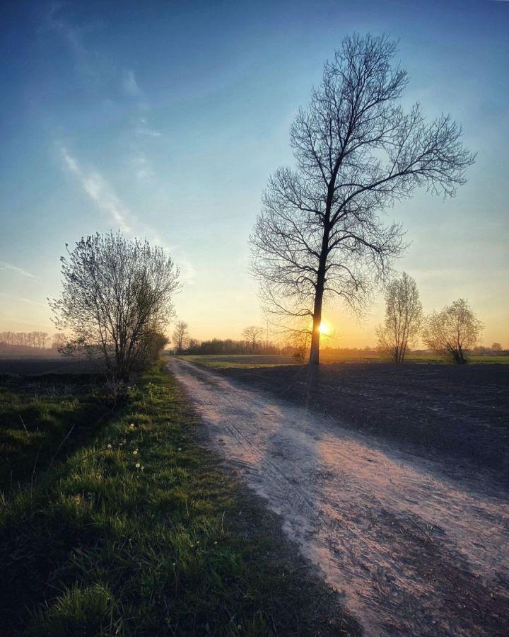 Road in the village of Nieuwkerken-Waas, Oost-Vlaanderen, Belgium (Photo credit to Silvy Van Osselar)