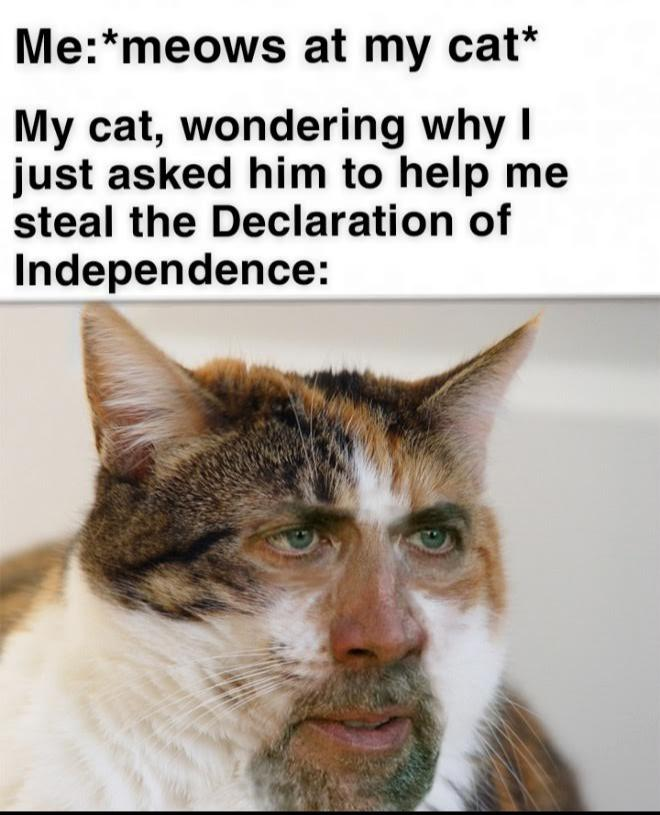 Declarations Of Nicolas Cage Imgflip