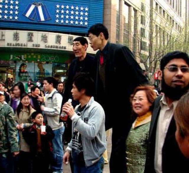 7'9 Bao Xishun and 7'10 Zhang Juncai (best quality i could find) : tall
