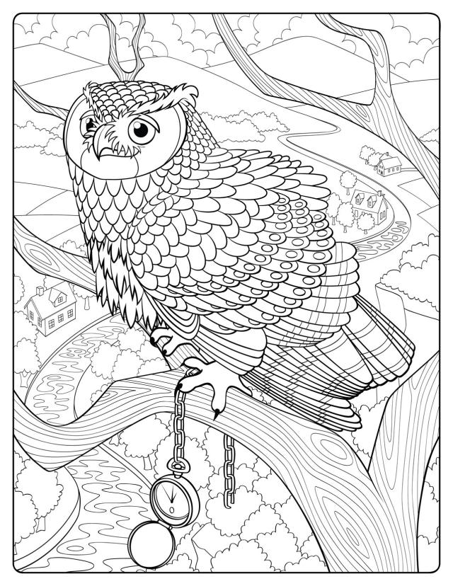 """Great Horned Owl, sample page from """"The Lives of Owls"""" coloring"""