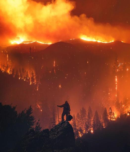 firefighter amidst wildfire