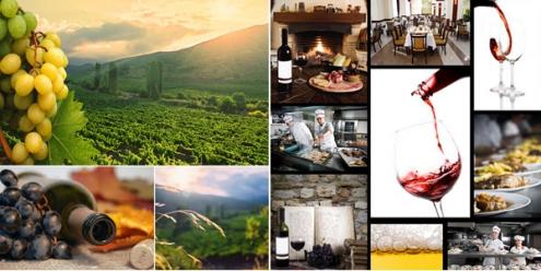 Винен туризъм - In Vino Veritas
