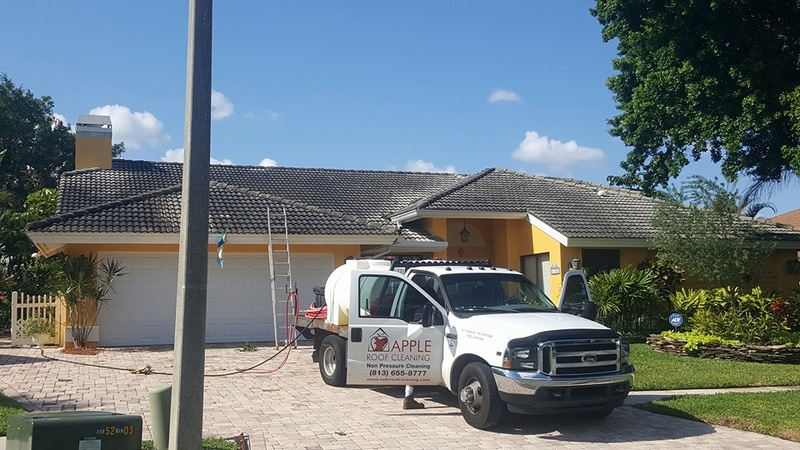 Tile Roof Cleaning In Tampa Florida Area Tile_r10