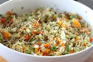 Les 10 meilleurs aliments pour élever votre vibration Graine13