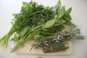 Les 10 meilleurs aliments pour élever votre vibration Herbes10