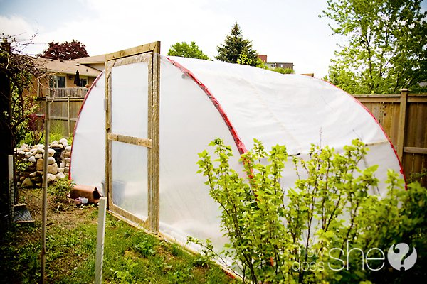 11 Cool DIY Greenhouses With Plans And Tutorials Shelterness