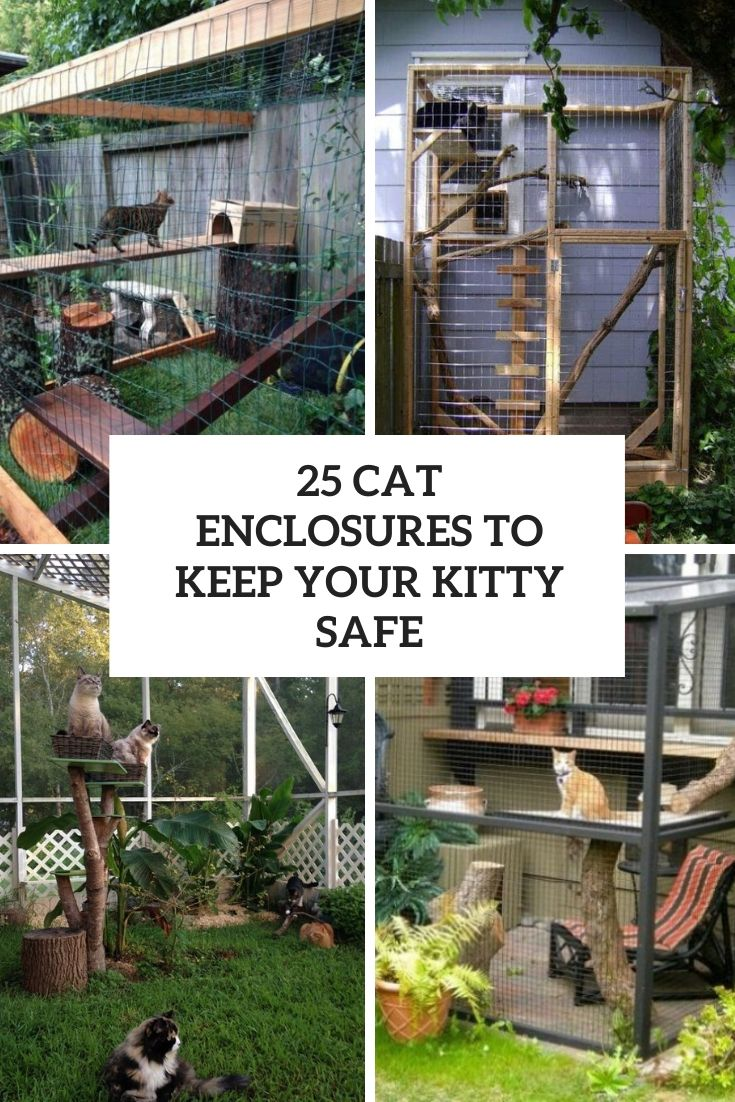25 cat enclosures to keep your kitty