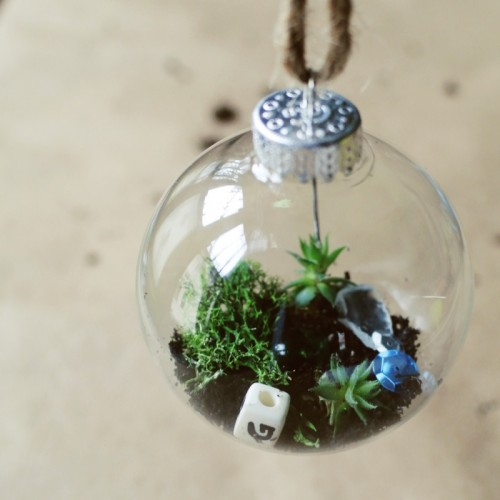 9 DIY Christmas Terrariums With Plants And Not Only