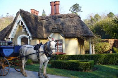 Ireland - Killarney: Cottage with Horse
