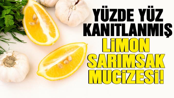 limon sarımsak kürü ile ilgili görsel sonucu