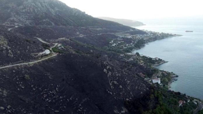 Marmara Adası yangınında 1 şüpheliye gözaltı