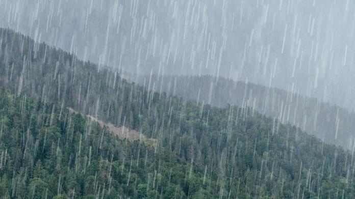 Ukrayna'da sel korkusu: Sağanak yağış yaşamı felç etti