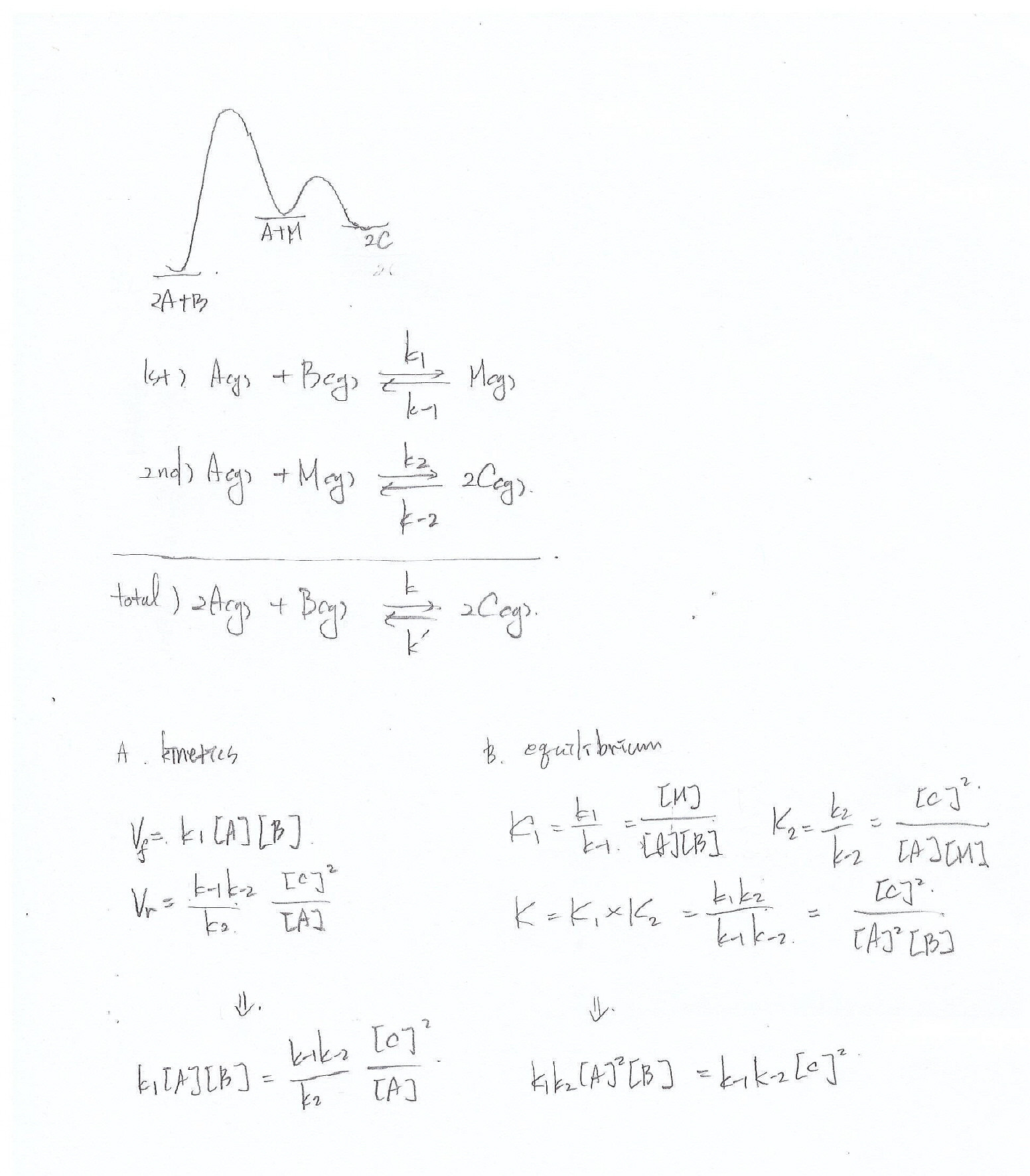 Reaction Coordinate Kinetics Equilibrium In Example