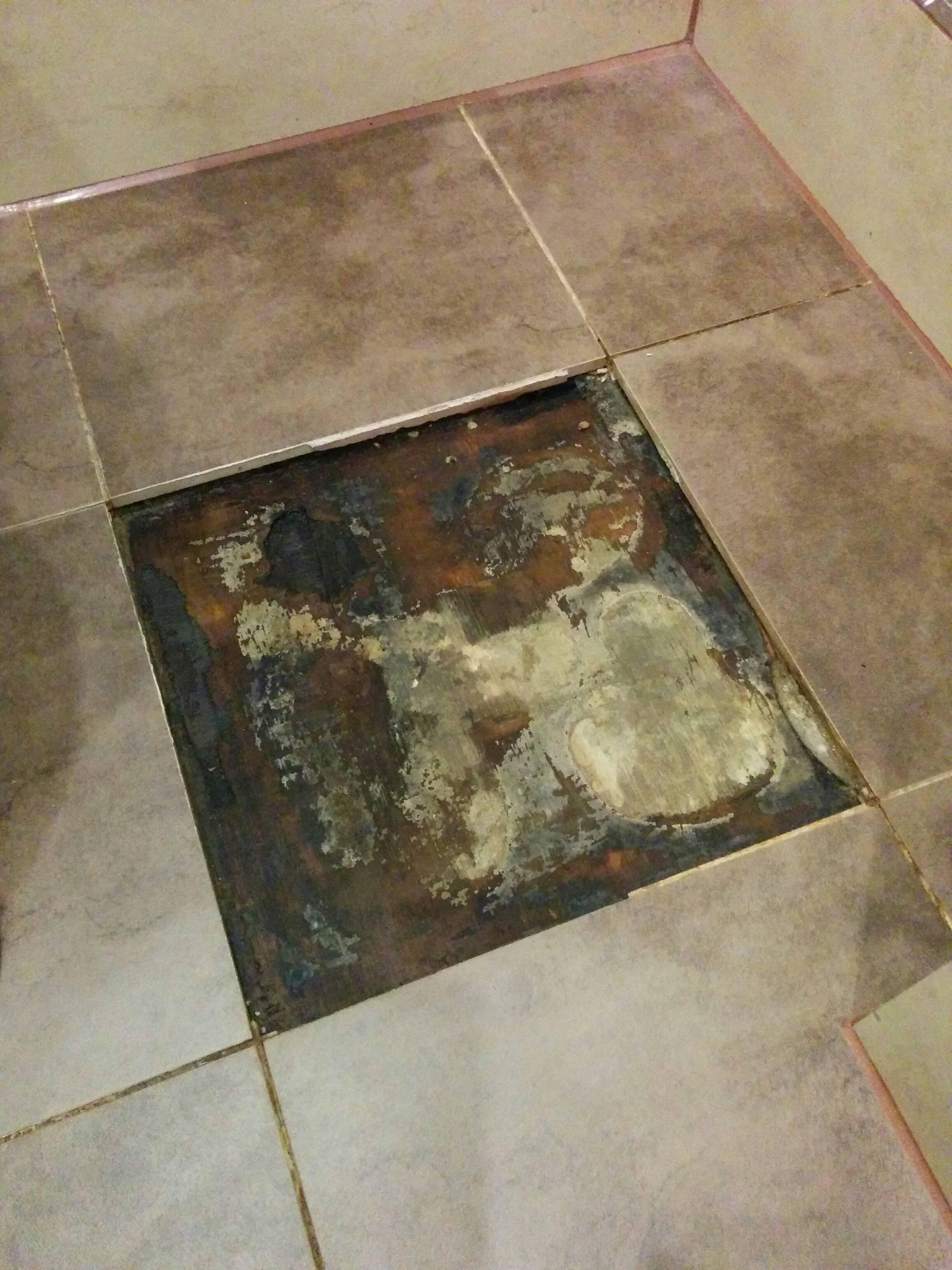 how to repair leak mould under bathroom