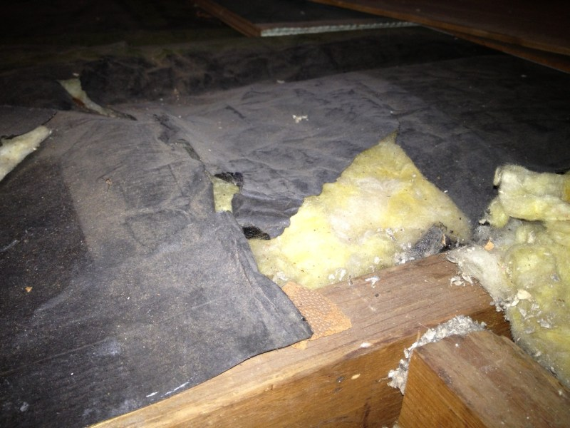 Enamour Insulation Attic Attic Can I Add Unfaced Insulation On Faced