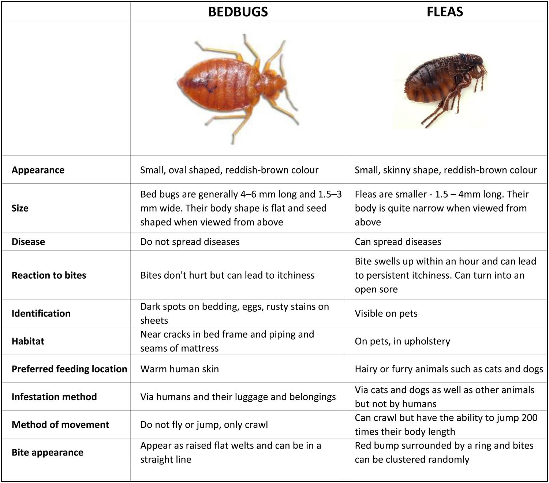 Species Identification
