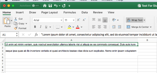 screen from excel showing wrapped text