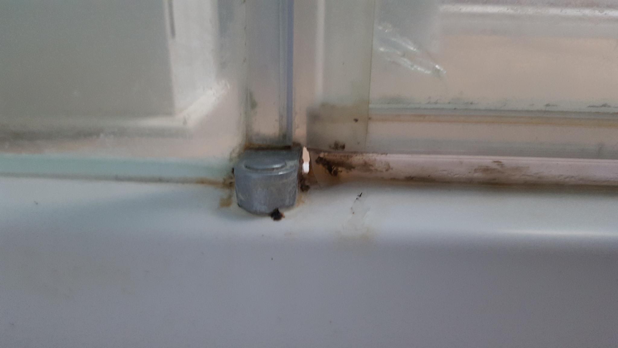 Fix Leak Between Seal And Shower Door Joint Home