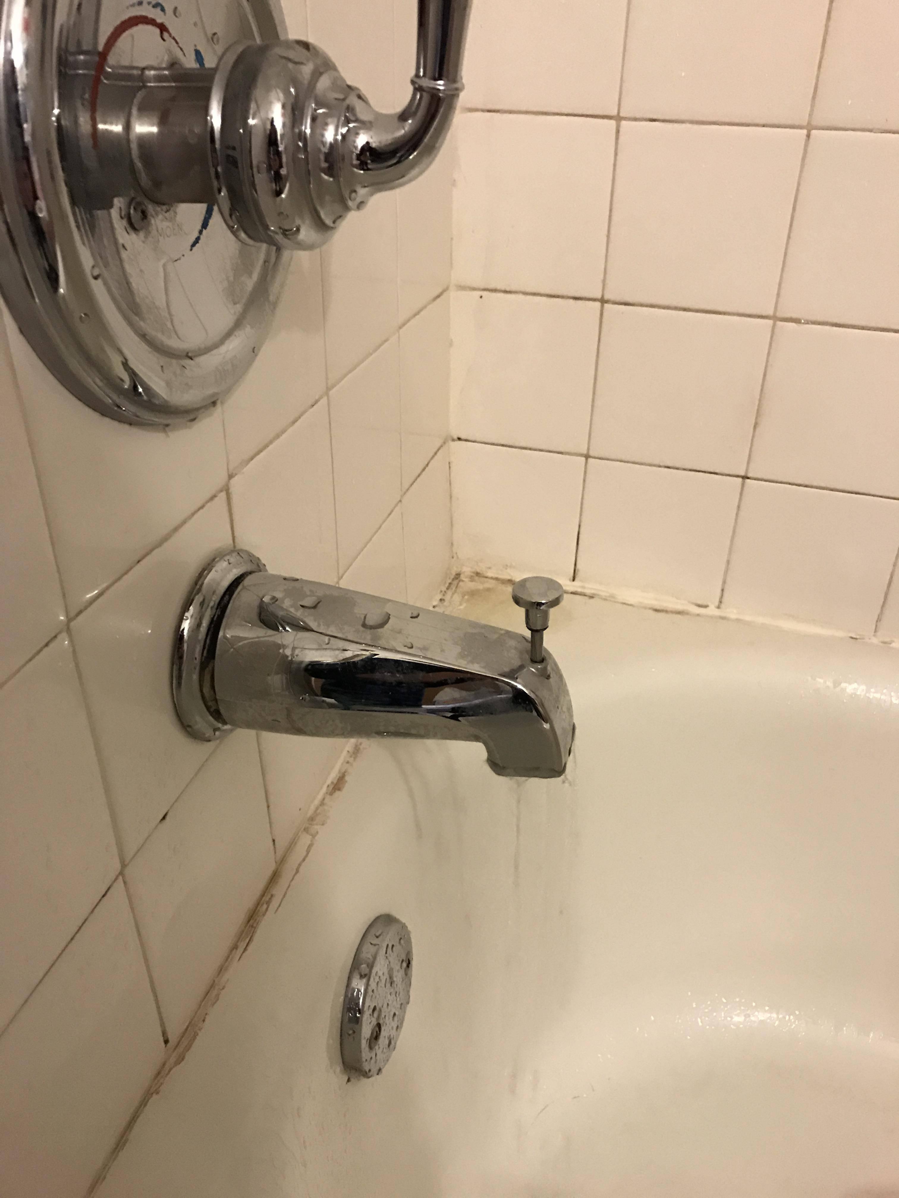 bathtub faucet leaking home
