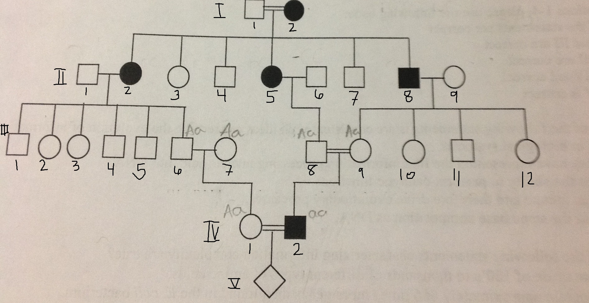 Genetics Pedigree Following A Rare Trait Autosomal