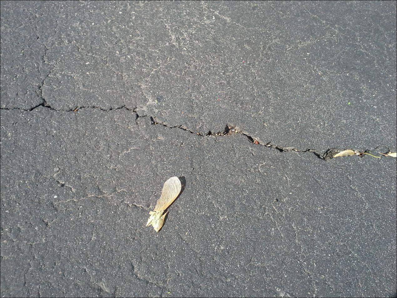 How To Clean Antifreeze Off Asphalt Driveway