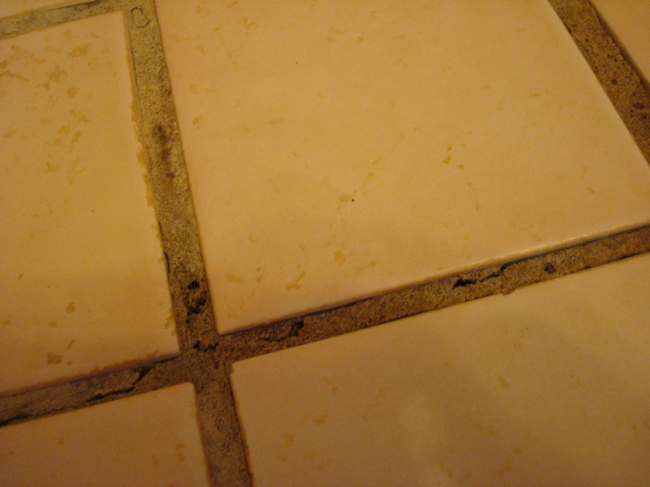 repair and prevent cracking grout