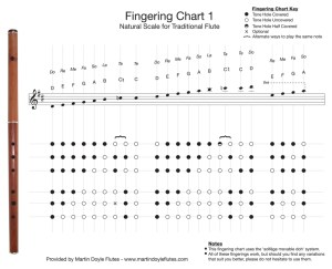 fingering  How do uncovered tone holes in middle of a