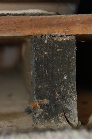 Wood Trimming Timber Support To Remove Suspected Mold
