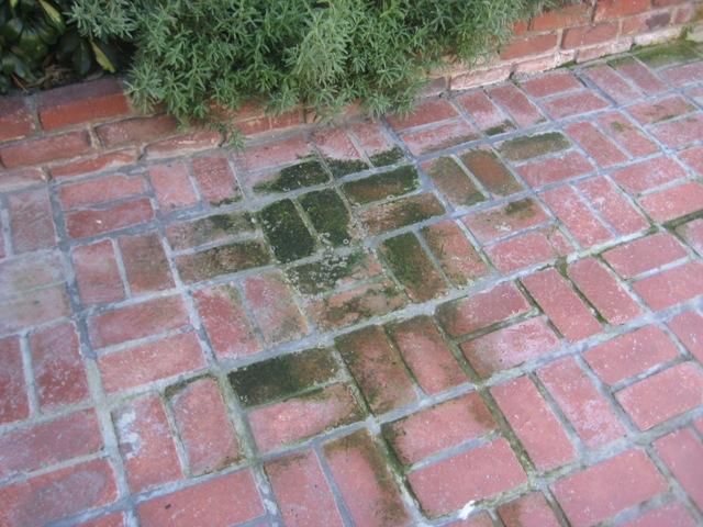outdoor brick walkway