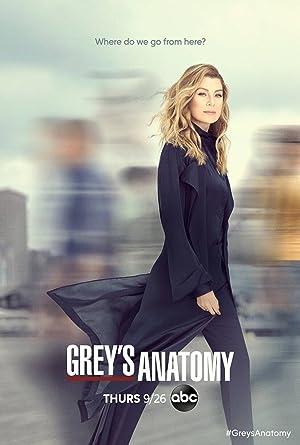 Grey's Anatomy - First Season Subtitle Indonesia