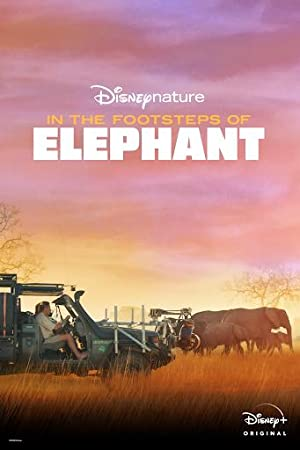In the Footsteps of Elephant Subtitle Indonesia
