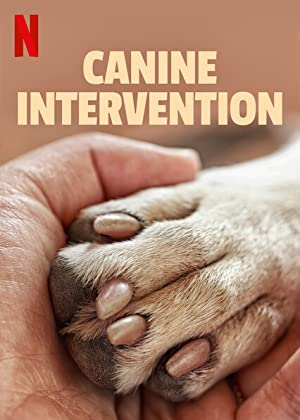 Canine Intervention - First Season Subtitle Indonesia