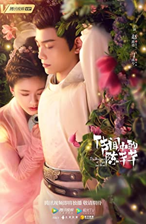 The Romance of Tiger and Rose Subtitle Indonesia