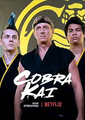 Cobra Kai - Third Season Subtitle Indonesia