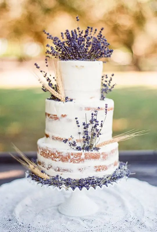 Pictures Cakes Types