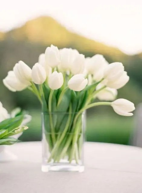 a modern glass vase with white tulips is an ideal and simple wedding centerpiece