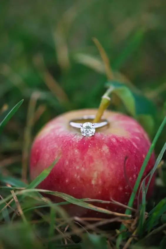 use an apple or a pear to display your engagement ring in the fall, it's very fall-like and cute