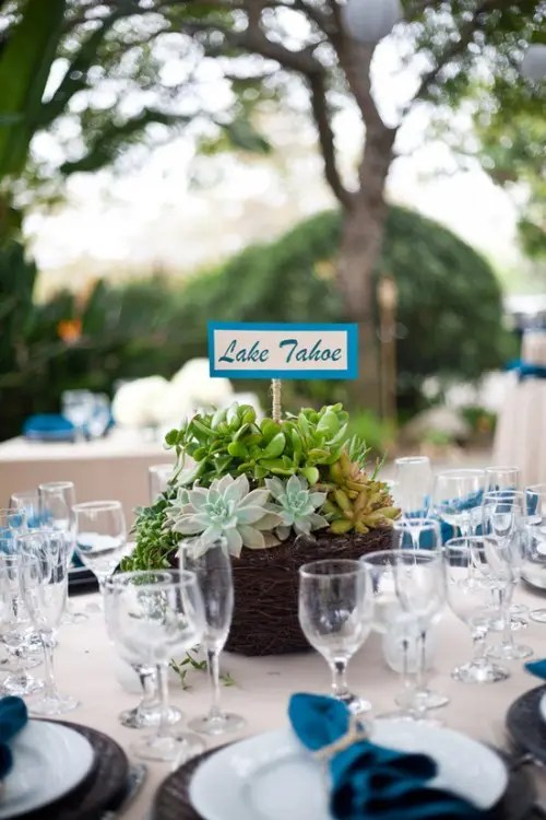 succulents in a woven planter and a bright topper for a modern wedding