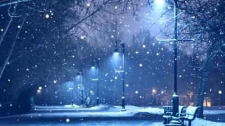 雪夜街景(无音乐)高清视频背景素材
