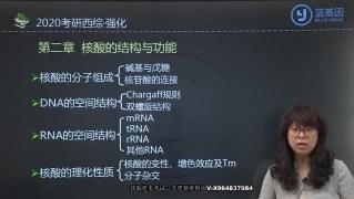 2020年考研西医综合刘忠宝强化课生物化学 核酸的结构与功能~1