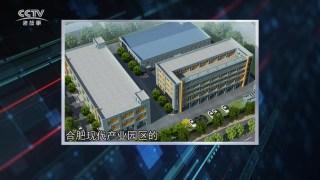 CCTV定位栏目专访安徽汉氏贝健科技生物有限公司董事长李健先生 十年专注润喉糖生产的企业历程