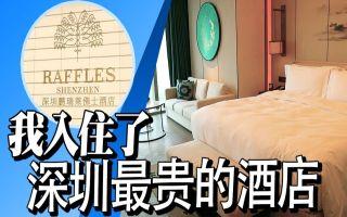 我入住了深圳最贵的酒店(深圳鹏瑞莱佛士酒店)