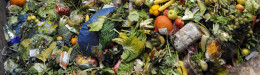 Image for UK Supermarket To Power Itself With Food Waste