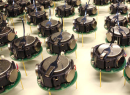 The Kilobots, a swarm of one thousand simple but collaborative robots.