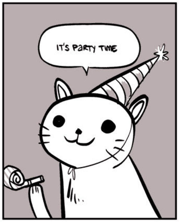 Image result for party time cat meme